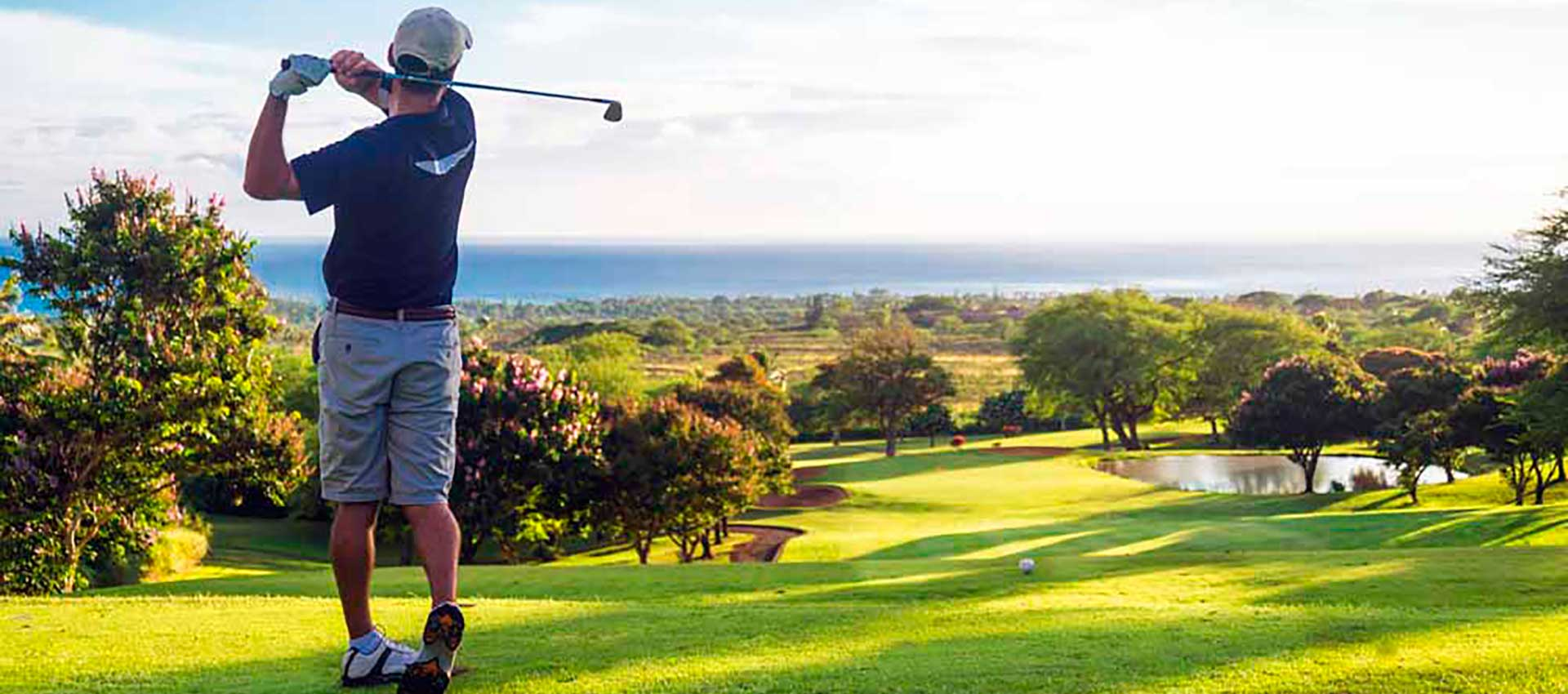 <small>Апартаменты, виллы в </small>La Resina Golf Country Club